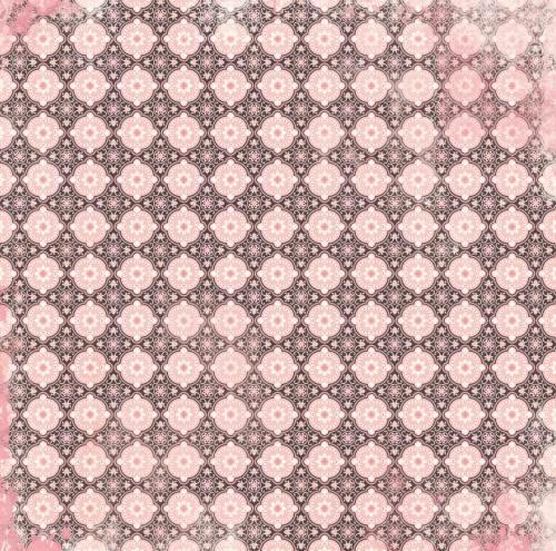 Petal Lane Posh Paper