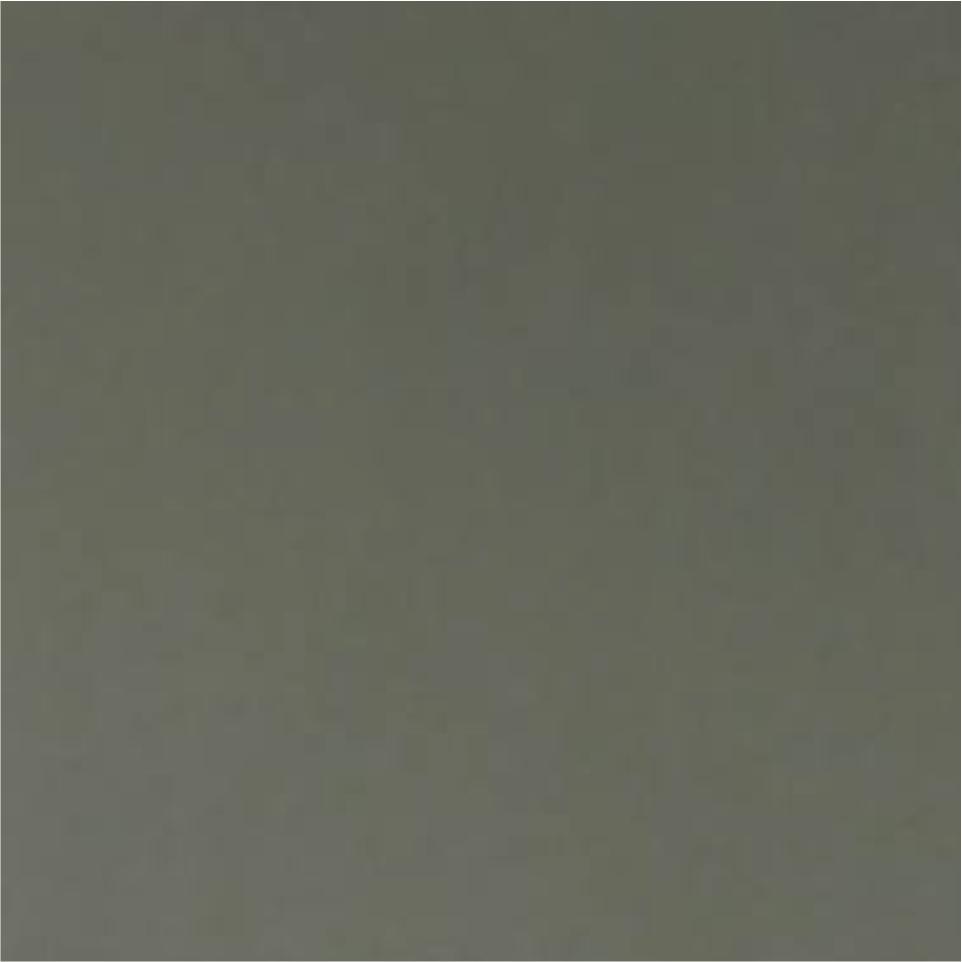 Olive Grey Cardstock