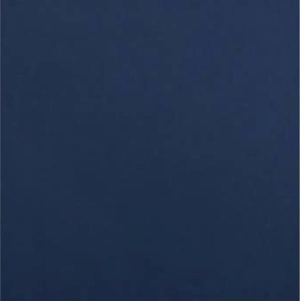 Navy Cardstock